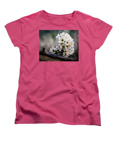 Blossom Gathering Women's T-Shirt (Standard Cut) by Terry Garvin