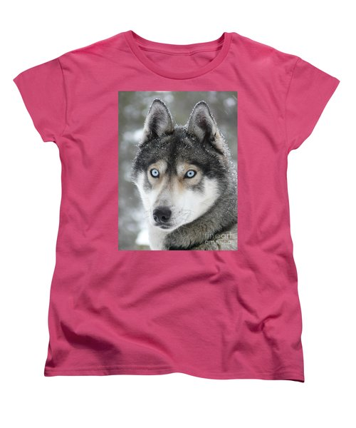Blue Eyes Husky Dog Women's T-Shirt (Standard Cut) by iPics Photography