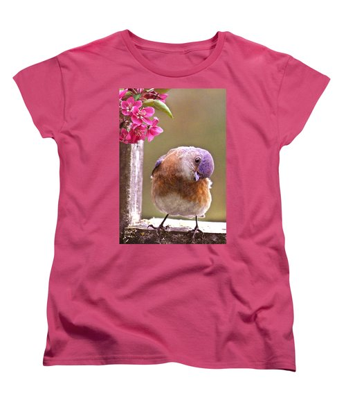 Bluebird Women's T-Shirt (Standard Cut) by Jean Noren
