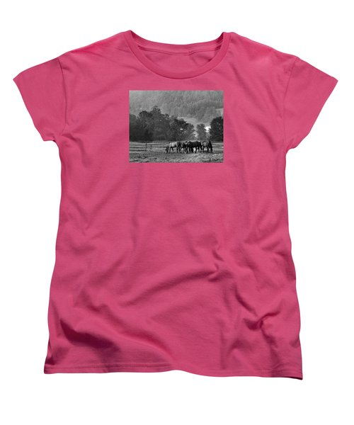 Women's T-Shirt (Standard Cut) featuring the photograph Broodmares by Joan Davis