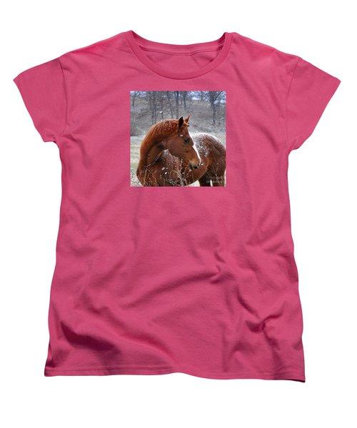 Snowing  Women's T-Shirt (Standard Cut) by Nava Thompson