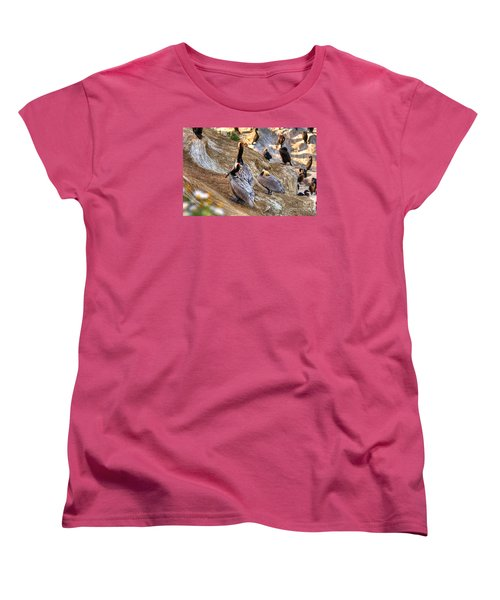 Women's T-Shirt (Standard Cut) featuring the photograph Brown Pelicans At Rest by Jim Carrell
