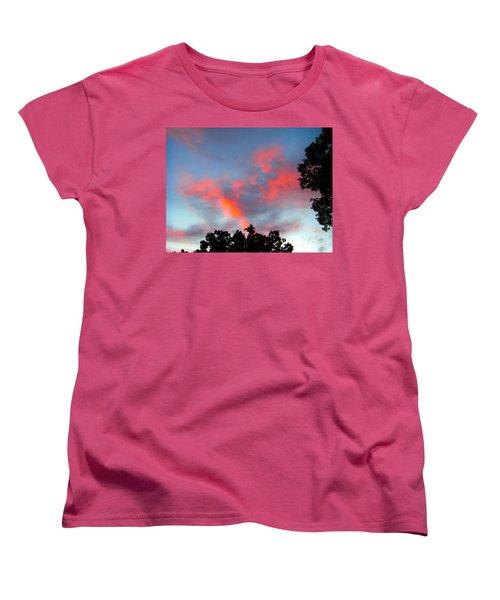 Brush Strokes Women's T-Shirt (Standard Cut) by Zafer Gurel