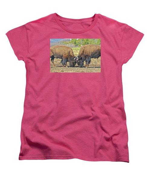 Buffaloes At Play Women's T-Shirt (Standard Cut)