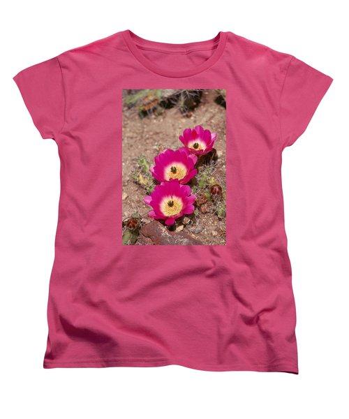 Cactus 1 Women's T-Shirt (Standard Cut) by Andy Shomock
