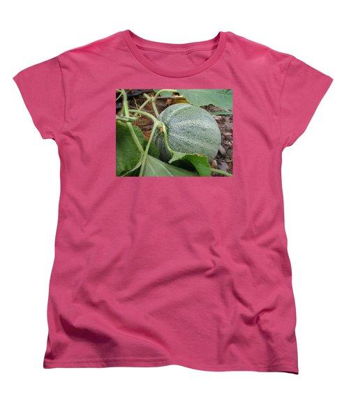 Cantaloupe  Women's T-Shirt (Standard Cut) by Jennifer Wheatley Wolf