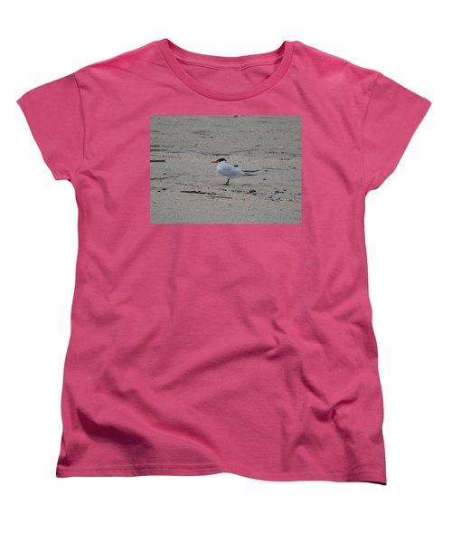 Women's T-Shirt (Standard Cut) featuring the photograph Caspian Tern by James Petersen