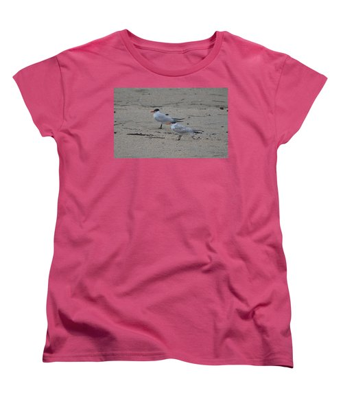 Women's T-Shirt (Standard Cut) featuring the photograph Caspian Tern Young And Adult by James Petersen