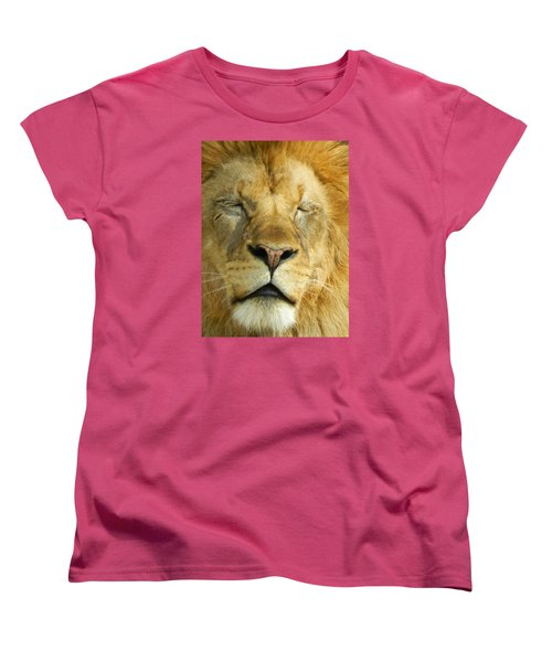Cat Nap Women's T-Shirt (Standard Cut) by Emmy Marie Vickers