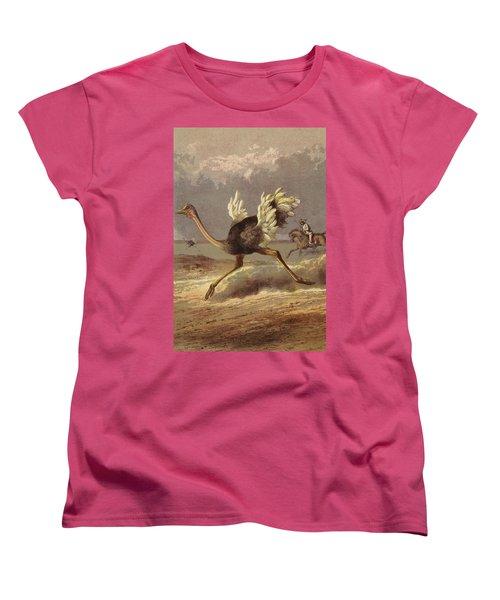 Chasing The Ostrich Women's T-Shirt (Standard Cut) by English School