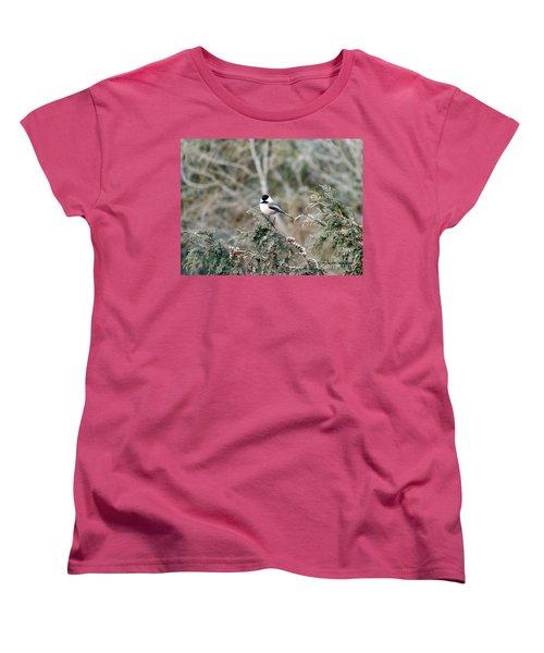 Women's T-Shirt (Standard Cut) featuring the photograph Chickadee In Cedar by Brenda Brown