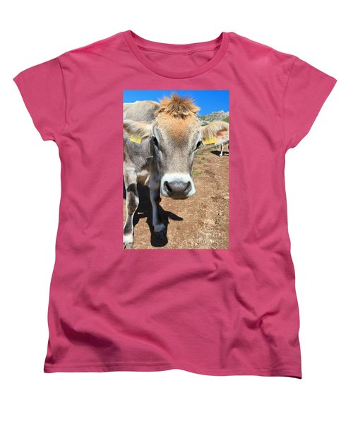 Cow On Alpine Pasture Women's T-Shirt (Standard Cut) by Antonio Scarpi