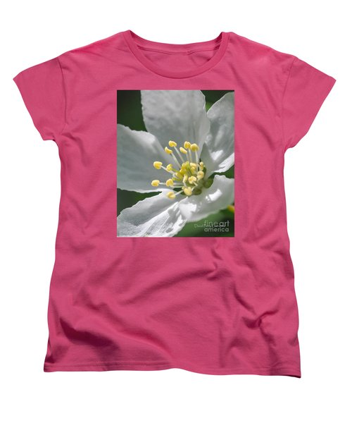 Delcate Widflower With Beautiful Stamen Women's T-Shirt (Standard Cut) by David Perry Lawrence