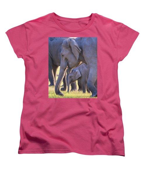 Dhikala Elephants Women's T-Shirt (Standard Cut) by David Beebe
