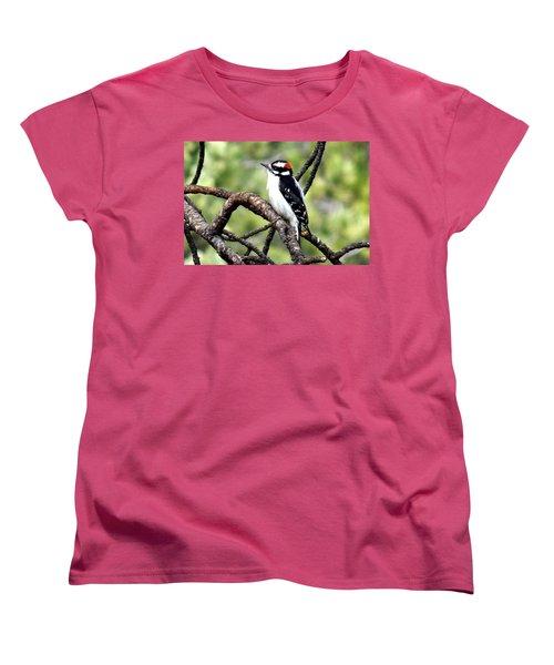 Downy Woodpecker Women's T-Shirt (Standard Cut) by Marilyn Burton