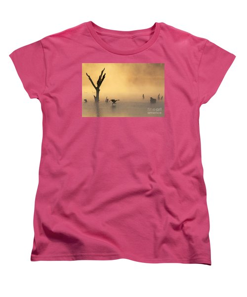 Foggy Landing Women's T-Shirt (Standard Cut) by Elizabeth Winter