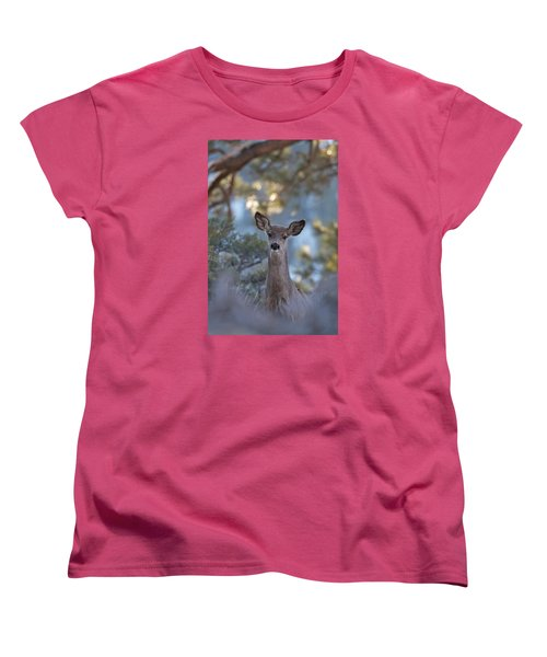 Framed Deer Head And Shoulders Women's T-Shirt (Standard Cut) by Duncan Selby