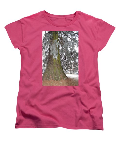 Women's T-Shirt (Standard Cut) featuring the photograph Frost On The Leaves by Felicia Tica