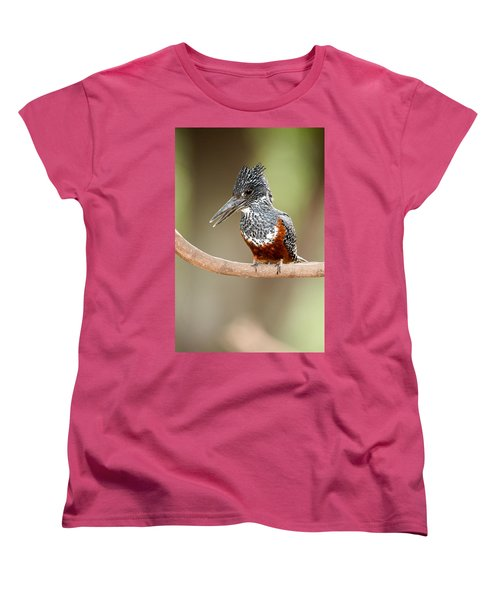 Giant Kingfisher Megaceryle Maxima Women's T-Shirt (Standard Cut) by Panoramic Images