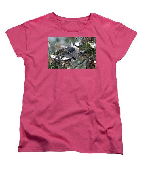 Gray Jay On A Snowy Pine Women's T-Shirt (Standard Cut) by Marilyn Burton