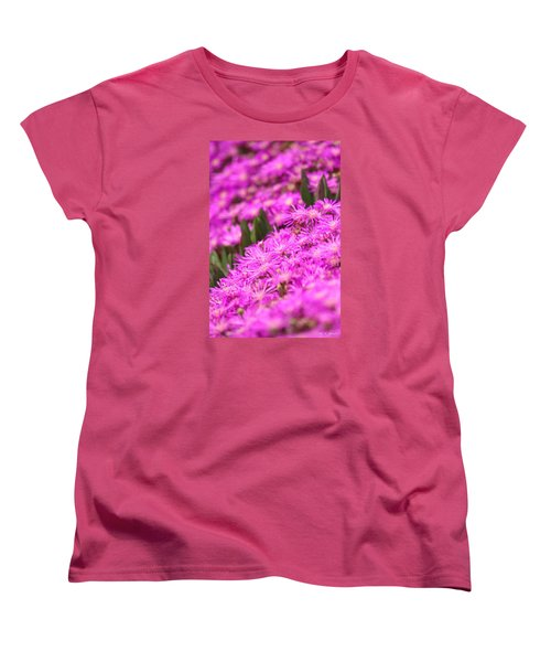 Green Picket Fences  Women's T-Shirt (Standard Cut) by Amy Gallagher