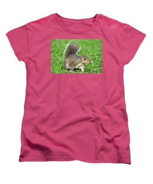Women's T-Shirt (Standard Cut) featuring the photograph Grey Squirrel by Antonio Scarpi