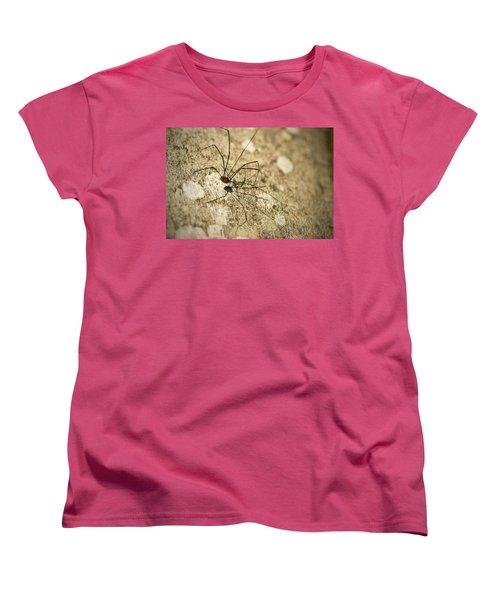 Women's T-Shirt (Standard Cut) featuring the photograph Harvestman Spider by Chevy Fleet