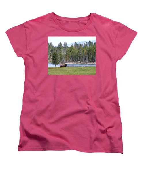Hayden Valley Bison Women's T-Shirt (Standard Cut) by Laurel Powell