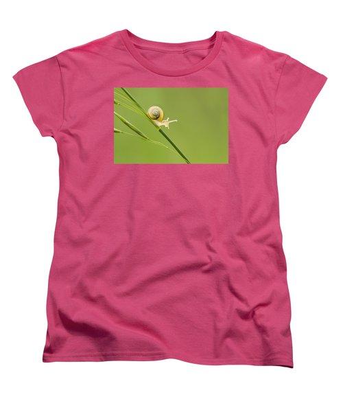 High Speed Snail Women's T-Shirt (Standard Cut) by Mircea Costina Photography