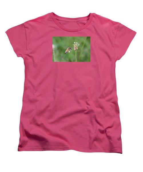 Honeybee And English Plantain Women's T-Shirt (Standard Cut) by Lucinda VanVleck