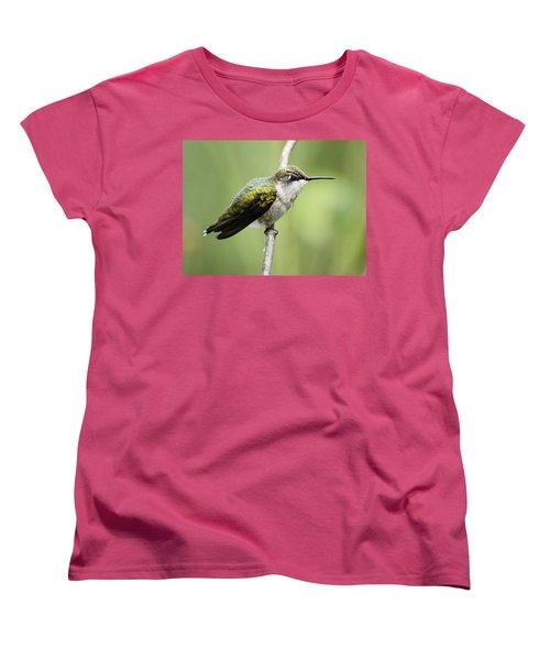 Hummingbird 3 Women's T-Shirt (Standard Cut) by Bonfire Photography
