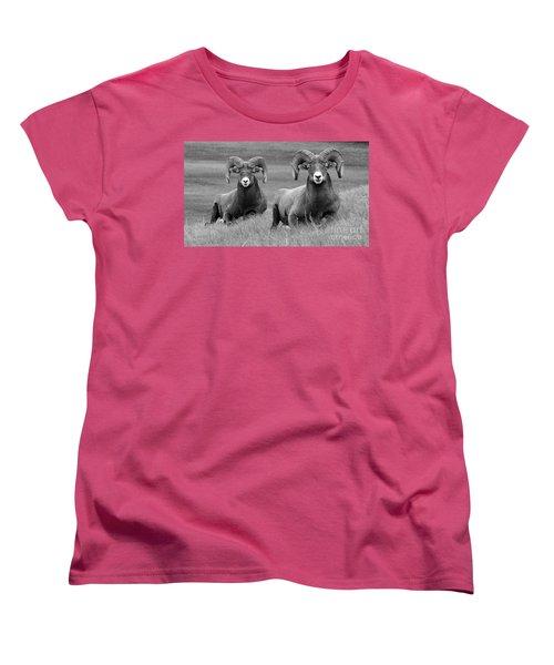 Just Hanging Out Women's T-Shirt (Standard Cut) by Vivian Christopher