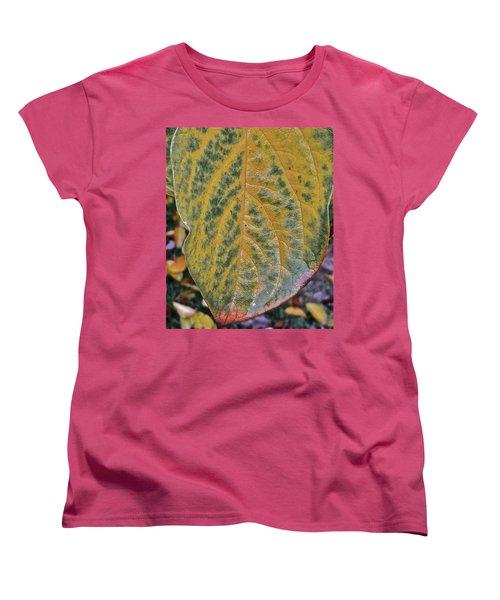 Women's T-Shirt (Standard Cut) featuring the photograph Leaf After Rain by Bill Owen