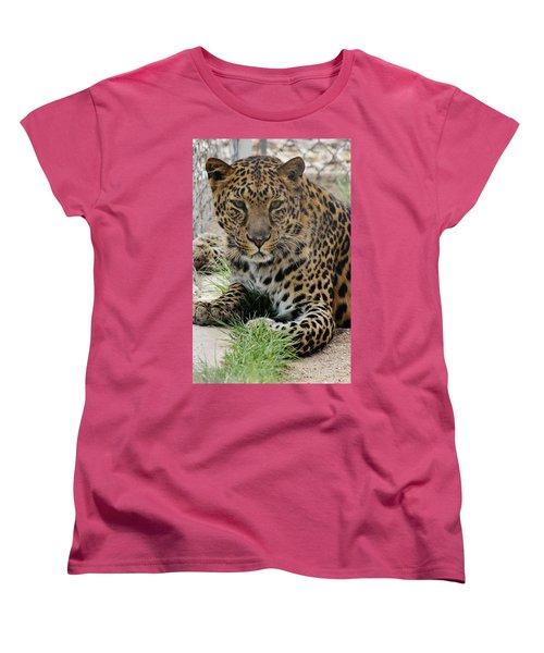 Leopard Lounging 1 Women's T-Shirt (Standard Cut) by Diane Alexander
