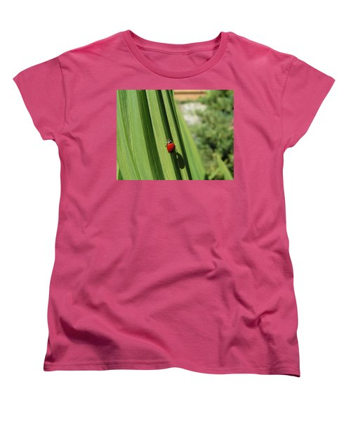 Ladybird Women's T-Shirt (Standard Cut) by Cheryl Hoyle