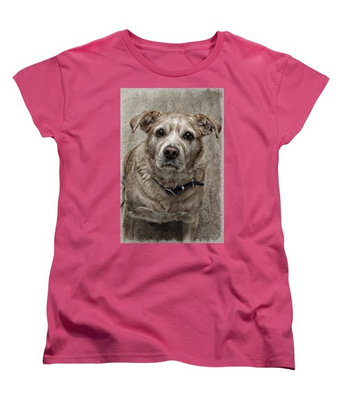 Women's T-Shirt (Standard Cut) featuring the photograph Loyalty  by Aaron Berg