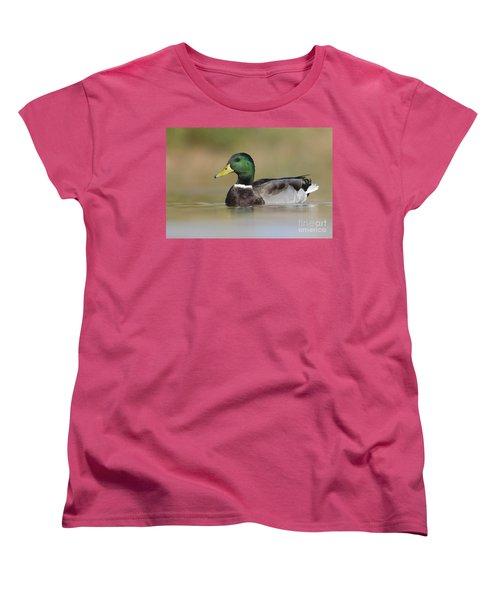 Women's T-Shirt (Standard Cut) featuring the photograph Mallard by Bryan Keil