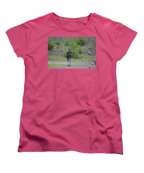 Moose Women's T-Shirt (Standard Cut) by James Petersen