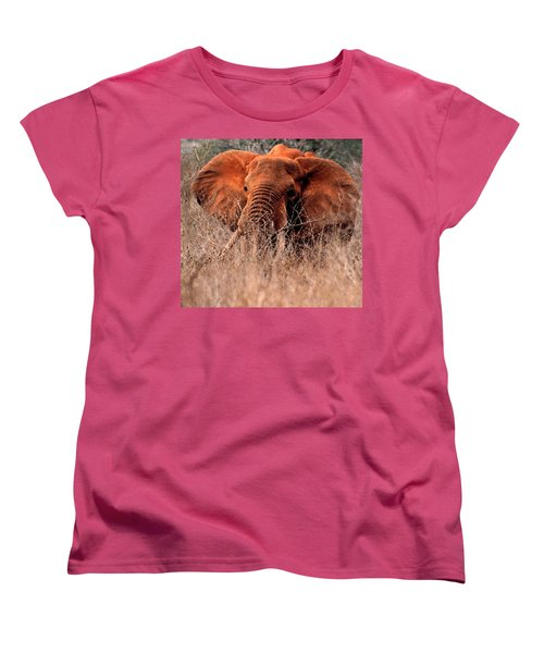 My Elephant In Africa Women's T-Shirt (Standard Cut) by Phyllis Kaltenbach