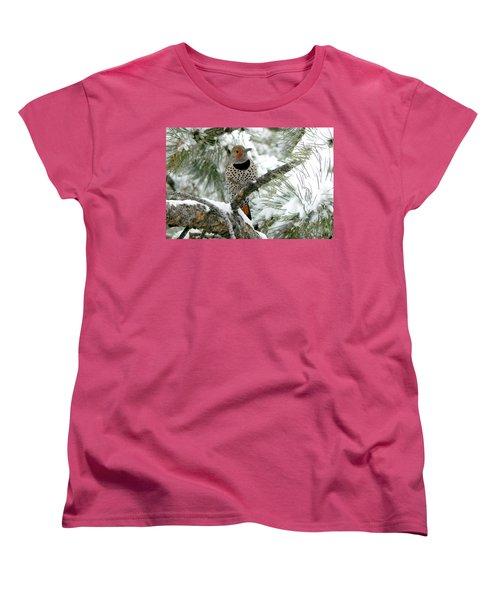 Northern Flicker On Snowy Pine Women's T-Shirt (Standard Cut) by Marilyn Burton