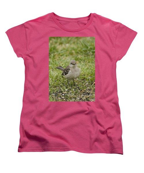 Northern Mockingbird Women's T-Shirt (Standard Cut) by Heather Applegate