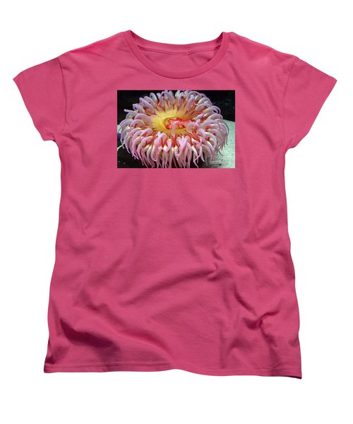 Women's T-Shirt (Standard Cut) featuring the photograph Northern Red Anemone by Robert Meanor