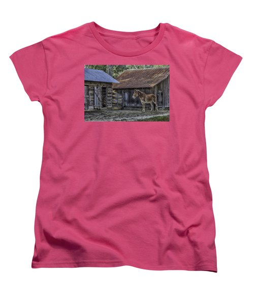 Old Red Mule Women's T-Shirt (Standard Cut) by Lynn Palmer
