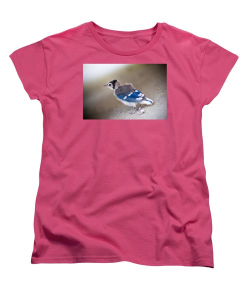 one day...I will fly Women's T-Shirt (Standard Cut) by Shane Holsclaw