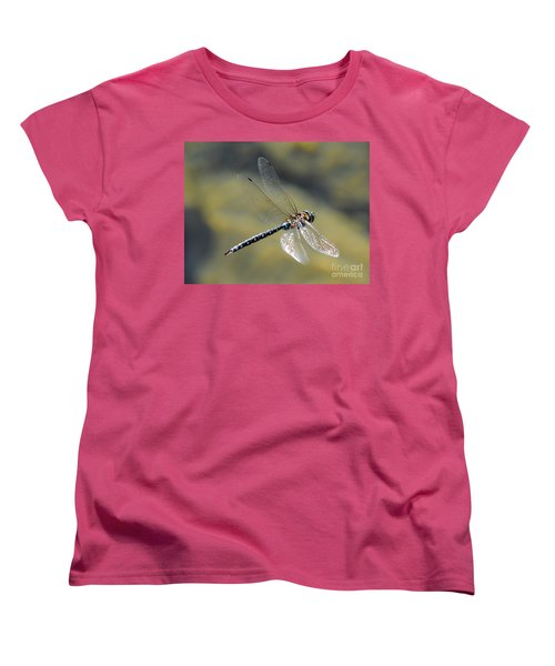 Women's T-Shirt (Standard Cut) featuring the photograph Paddletail Darner In Flight by Vivian Christopher
