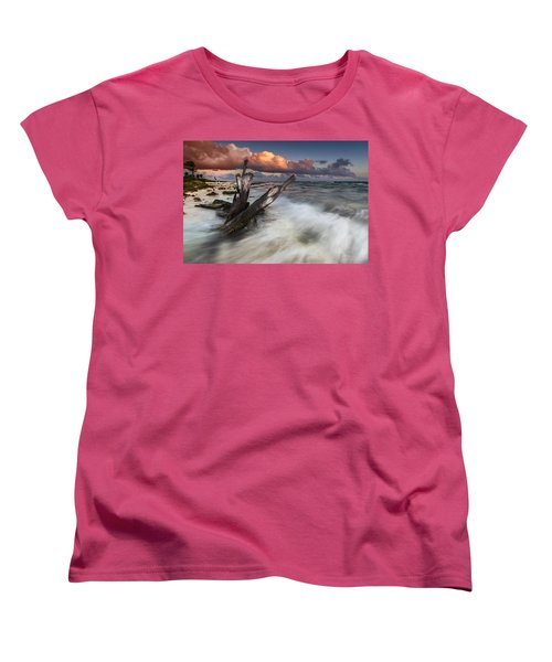Women's T-Shirt (Standard Cut) featuring the photograph Paradise Lost by Mihai Andritoiu