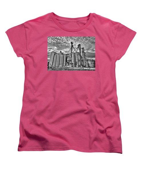 Past Elevation Women's T-Shirt (Standard Cut)