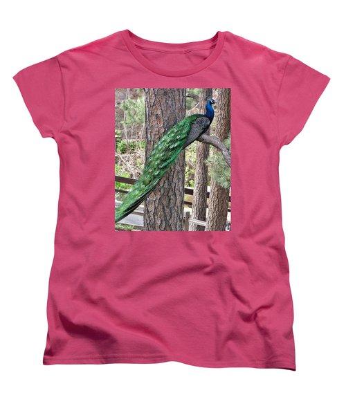 Women's T-Shirt (Standard Cut) featuring the photograph Peacock Watches The World by Diane Alexander