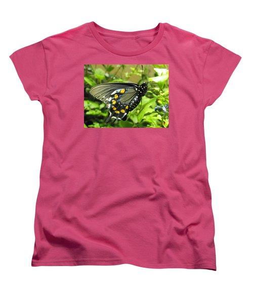 Pipevine Swallowtail Women's T-Shirt (Standard Cut) by Jennifer Wheatley Wolf
