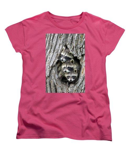 Raccoon Trio At Den Minnesota Women's T-Shirt (Standard Cut) by Jurgen & Christine Sohns